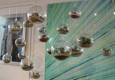 Succulent Terrarium, Succulent Orb, Hanging Succulent Garden, House warming Gift.. $25,00, via Etsy.