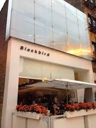 Blackbird, Chicago