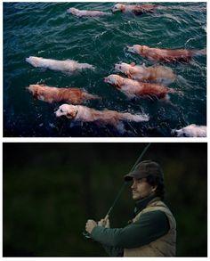 Hannibal Will