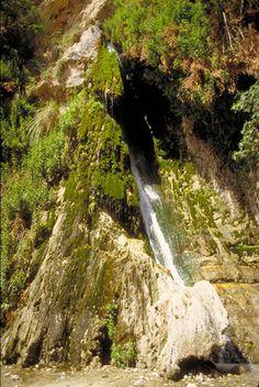 ein_gedi_nature_reserve_israel_photo_gov.jpg (371×554)