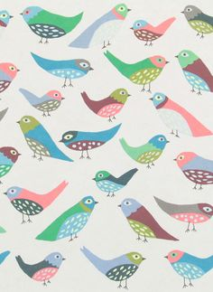#birds Great colors too #illustration