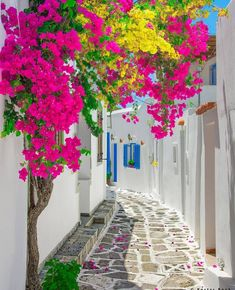 Paros Island - Greece ✨🌺🌺🌺✨ Picture by ✨✨ . for a feature 🌺