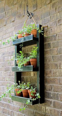 diy macrame wall hanging planter Indoor Succulent Planter, Diy Hanging Planter, Hanging Succulents, Hanging Pots, Indoor Planters, Diy Planters, Hanging Shelves, Planter Ideas, Shelf Wall
