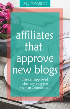 Think your blog is too new to get affiliates? Think again! These affiliates all approved my blog when it was less than 2 months old!