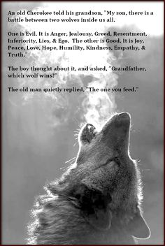 """An old Cherokee told his grandson, """"My son, there is a battle between two wolves inside us all.  One is Evil. It is Anger, Jealousy, Greed, Resentment, Inferiority, Lies, and Ego. The other is Good. It is Joy, Peace, Love, Hope, Humility, Kindness, Empathy, & Truth.""""  The boy thought about it, and asked, """"Grandfather, which wolf wins?""""  The old man quietly replied, """"The one you feed."""""""