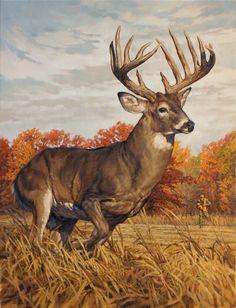 db416f89 Ryan Kirby Art — Original White-tailed Deer Painting