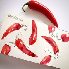 I decided to Periscope the beginning of this page of chillies - check it out and see what you think. It was still nerve wracking #sketchaday #waterbrush #watercolors #winsorandnewton #moleskine #foodie #foodillustrator #chili #illustratedfood  #ohnmarwin #calledtobecreative #creativityfound #createlittlethings #foodillustration #foodillustrator