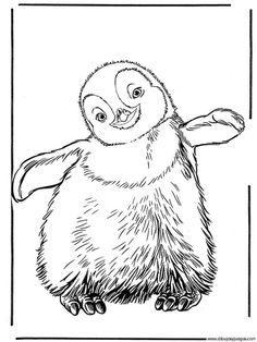 realistic penguin coloring pages bing images - Coloring Pages Of Penguins