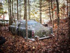 aston-martin-db4-en-el-bosque-durante-50-anos-en-un-bosque