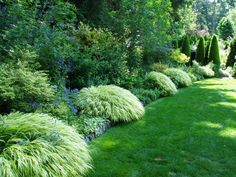 A Pacific Northwest treasure aims for a comeback! Heronswood | Pacific Northwest gardens - seattlepi.com