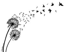 dandelion turning into birds drawing - Google Search
