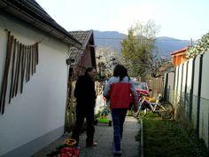 Austrian Rock-Music