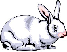 Quality Clip Art of Animals That Live On A Farm: Rabbit