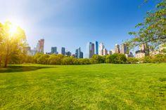 El Central Park, el gran pulmón de #NuevaYork, el espacio más vasto y verde de #Manhattan. Recorre y disfruta de la tranquilidad en medio de la ciudad más intensa del mundo. http://www.bestday.com.mx/Nueva-York-City-area/Atracciones/