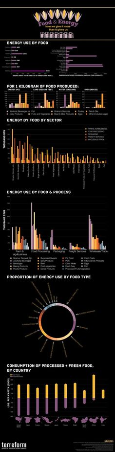Data Visualization : Food and Energy