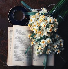 stephanocardona: I wish you could smell this. / Tea, Coffee, and Books Book Flowers, Coffee And Books, Coffee Reading, Reading Time, Book Aesthetic, Pretty Photos, Photo Instagram, Instagram Posts, Book Photography