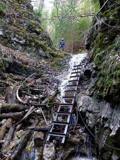 Sucha Bela gorge Slovak Paradise National Park 12