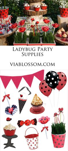 Ladybug Birthday Party Supplies and Must have decorations.  For more go to blog.viablossom.com