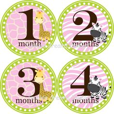 Baby Monthly Onesie Stickers