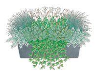 Herbstliche Pflanzideen: Gartencenter Ostmann grün erleben