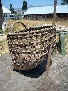Old grape gathering basket