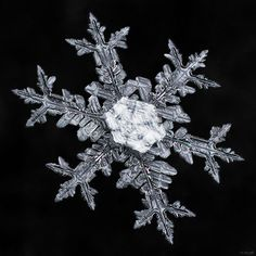 Snowflake-a-Day #22 | Flickr - Photo Sharing!