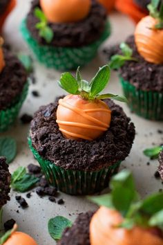 Carrot Patch Cupcakes {The Cutest Easter Treat!} – Life Made Simple Bakes Carrot Patch Chocolate Cupcakes – perfektes Rezept für Osterdessert! Cupcake Recipes, Baking Recipes, Cupcake Cakes, Dessert Recipes, Gourmet Cupcakes, Rose Cupcake, Quick Recipes, Holiday Desserts, Holiday Recipes