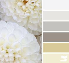 ...we love these flora tones from @designseeds. perfect #weddingcolortheme for a #paroswedding, and perfect for a #mykonoswedding too.