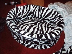 Zebra Cat Bed Or bed for ferrets.. ha