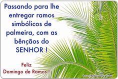 Feliz Domingo de Ramos. Clique na imagem e encontre também muitas outras mensagens, reflexões, orações...