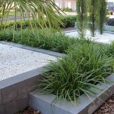 Greek Garden, Hydrangea, Modern Backyard, Contemporary Garden, Pergola Patio, Garden Inspiration, Garden Landscaping, Vegetable Garden, Landscaping