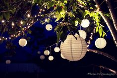 garden party lights - Buscar con Google