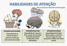 Neurociências em benefício da Educação!: Nosso cérebro é um órgão fantástico e muito valioso
