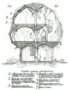 "hideback: "" Luc Schuiten is a visionary Belgian architect. Following the principle of ""archiborescence,"" his buildings blend natural and manufactured elements into structures that resemble lotus pods,..."