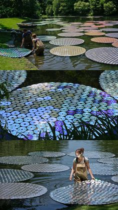 Old CDs (65,000 of them) used to create garden art as floating waterlilies