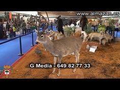 Feria Venalmazán 2015 Almazán (Soria) - YouTube
