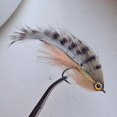 Tied a few different perch patterns yesterday, this one is going in my reservoir box for fry feeding fish. Pike Fishing, Bass Fishing Tips, Fishing Knots, Fishing Bait, Best Fishing, Trout Fishing, Fishing Stuff, Saltwater Flies, Saltwater Fishing