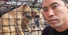 Marc har räddat 1 000 hundar från att slaktas i Kina. Nu hyllar vi hans protest…
