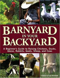 Barnyard in Your Backyard: A Beginner's Guide to Raising Chickens, Ducks, Geese, Rabbits, Goats, Sheep, and Cattle