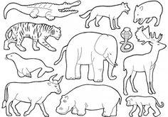 les animaux de la jungle - coloriages