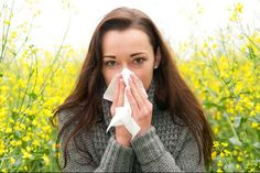 Allergic rhinitis or Hay fever is a condition in which congestion, sneezing, sinus pressures and runny nose can be noticed. Symptoms of cold and hay fever are Allergy Asthma, Anti Allergy, Allergy Free, Winter Allergies, Seasonal Allergies, Kids Health, Health Tips, Children Health, Home Remedies