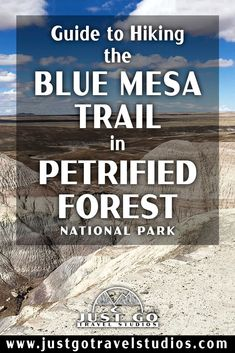 The Blue Mesa Trail in Petrified Forest National Park is a fantastic short hike. Our blog on this great hike in Petrified Forest will help you know what to do and what to expect while you are out on your hike! Petrified Forest National Park, Arizona Travel, What To Pack, Where To Go, Just Go, Trail, National Parks, Hiking, Blog