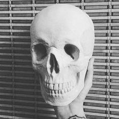 Studio skulls por lasmarmotas en Etsy