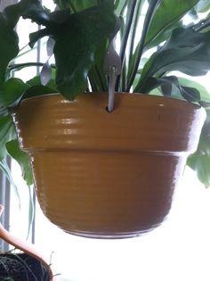 Garden City Pottery (San Jose) hanging planter