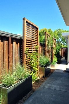 Backyard Privacy Fence Landscaping Ideas On A Budget 121 #LandscapingIdeas