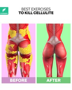 To get rid of cellulite you have to complete the right workouts in the right way. Cellulite occurs when you have too much body fat and not enough muscles. Kill cellulite and build muscles with these workouts from FitonomyApp. Fitness Workouts, Gym Workout Videos, Fitness Workout For Women, Sport Fitness, Easy Workouts, Fitness Plan, Full Body Gym Workout, Hip Workout, Easy Morning Workout
