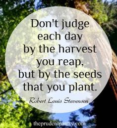 Don't judge each day by the harvest you reap, but by the seeds that you plant. - Robert Louis Stevenson