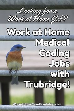 Trubridge is hiring home-based inpatient and outpatient medical coders in the U. You will be training and working from your own home office. FT and PT. Awesome work from home coding opportunity! You can make money from home! Work From Home Moms, Make Money From Home, Way To Make Money, Medical Coder, Medical Billing And Coding, Medical Careers, Medical Terminology, Coding Training, Work From Home Opportunities