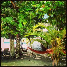 #Beach #Jamaica #Caribbean Negril, Outdoor Furniture, Outdoor Decor, Jamaica, Hammock, Caribbean, Beach, Home Decor, Negril Jamaica
