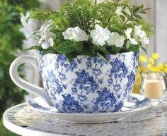 89 Best Cup Saucer Planter Images Planters Window Boxes Trough